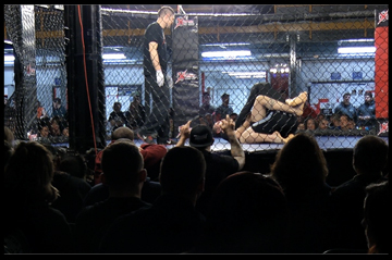MMA Fight Screen Shot